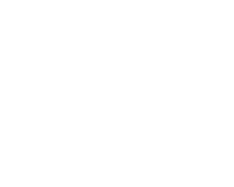 New York State Smokers Quitline logo